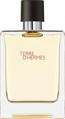 Terre d'Hermes - Eau de Toilette 100 ml
